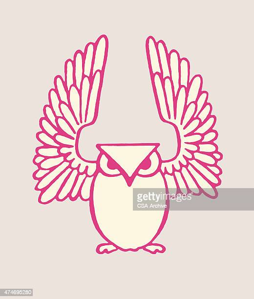 owl with wings spread - bird of prey stock illustrations, clip art, cartoons, & icons