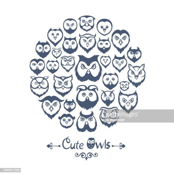 owls collage - owl stock illustrations