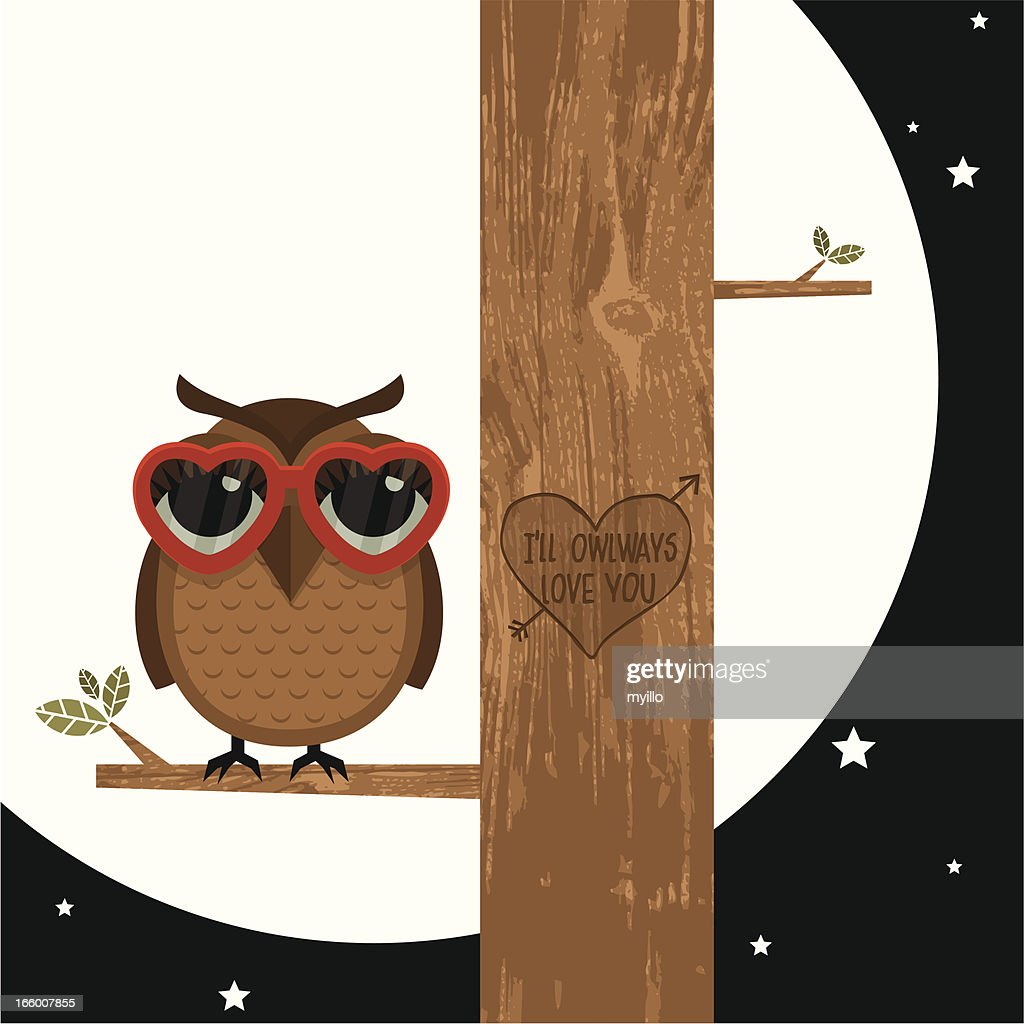 I owlways love you moon owl valentine vector illustration