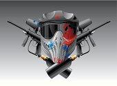 Paintball mask & guns