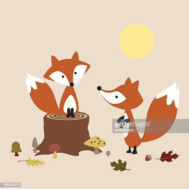 pair of foxes - fox stock illustrations, clip art, cartoons, & icons