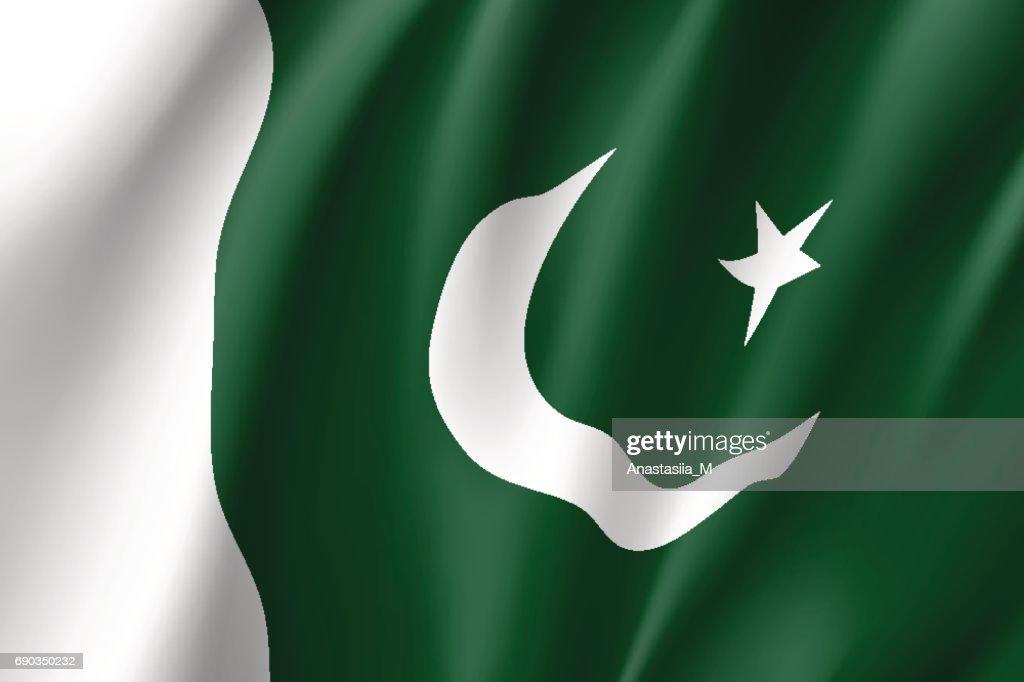 Pakistan flag, vector flat style