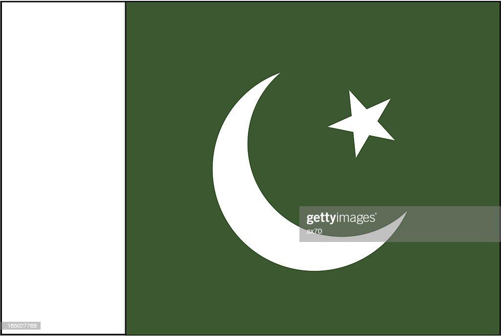 Pakistan Flag ( VECTOR )