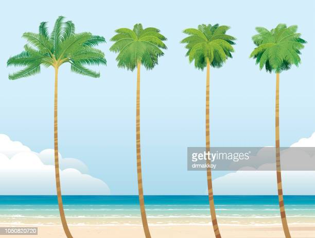 palm beach - long beach california stock illustrations, clip art, cartoons, & icons