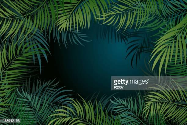 illustrations, cliparts, dessins animés et icônes de fond de feuilles de palmier - feuille de palmier