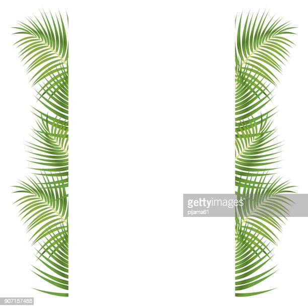 palm leaves border - coconut leaf stock illustrations, clip art, cartoons, & icons