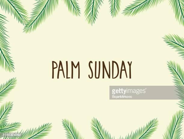 ilustrações, clipart, desenhos animados e ícones de poster do domingo de palma com folhas. texto manuscrito. ilustração do vetor. - domingo de ramos