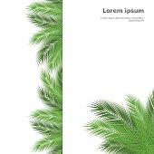 palm template