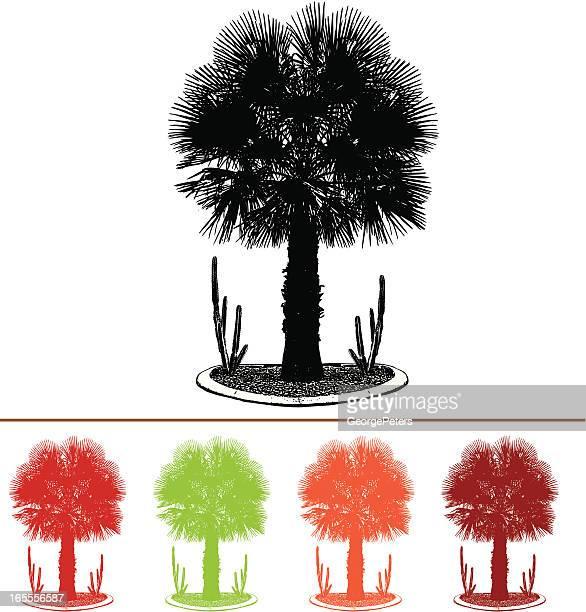 ヤシの木、サボテン - 乾燥気候点のイラスト素材/クリップアート素材/マンガ素材/アイコン素材