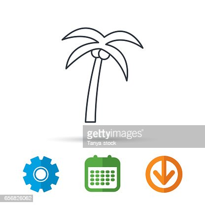 Palm Tree Icon Travel Or Vacation Symbol Vector Art Getty Images