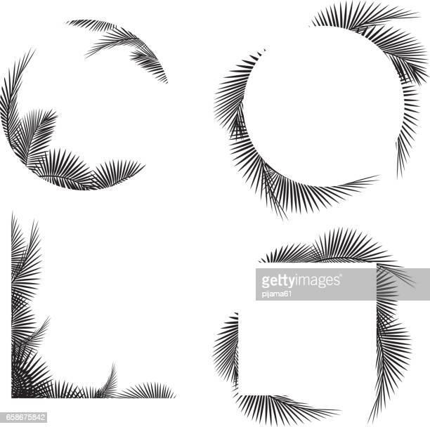 illustrations, cliparts, dessins animés et icônes de feuille de palmier cadre silhouettes - feuille de palmier
