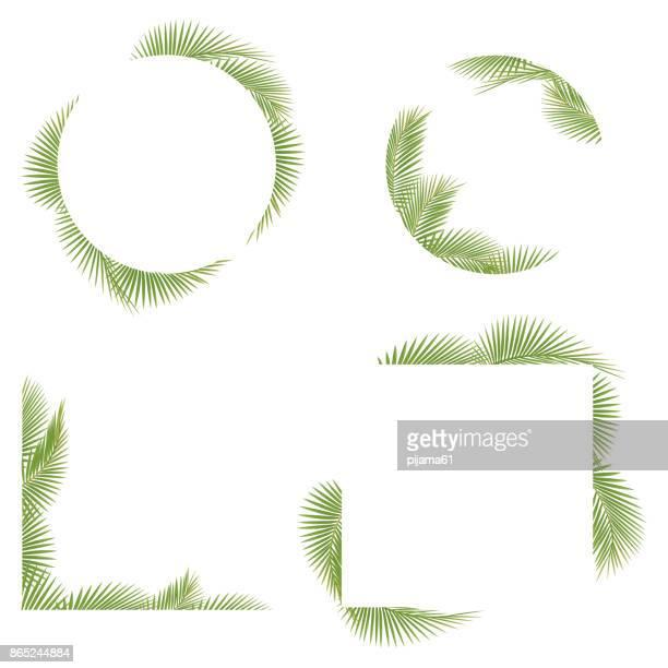 illustrations, cliparts, dessins animés et icônes de frame de terminal palm tree - feuille de palmier