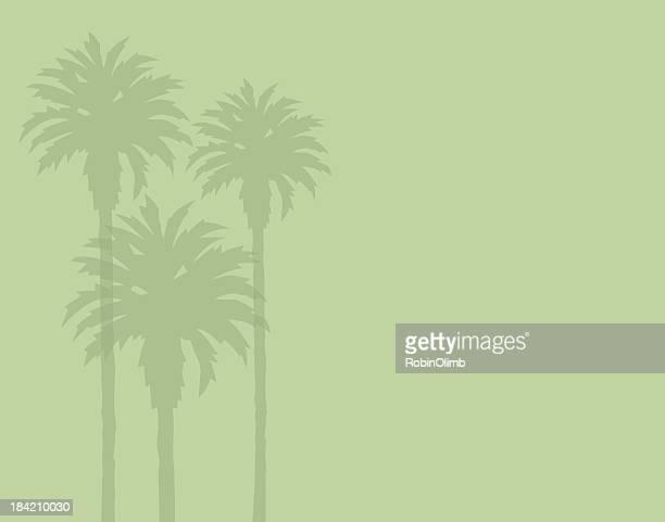 illustrations, cliparts, dessins animés et icônes de des silhouettes palm tree - feuille de palmier