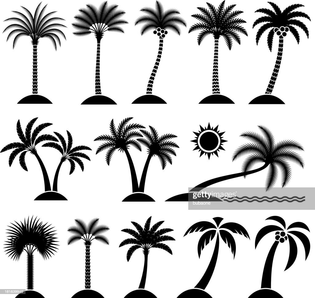 Palm Tree Tropical vector icon set : stock illustration