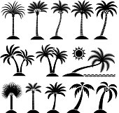 Palm Tree Tropical vector icon set