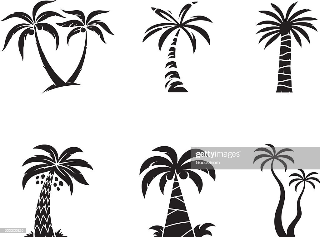 Palm tree : stock illustration