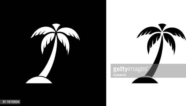 palm tree. - palm tree stock illustrations