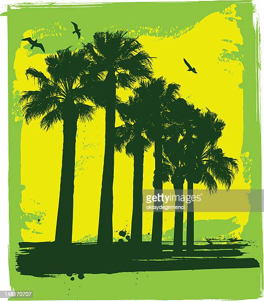 palm trees and seagull