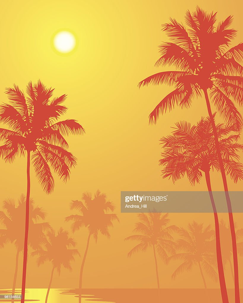 Palm Trees on a Hot Summer Day : stock illustration