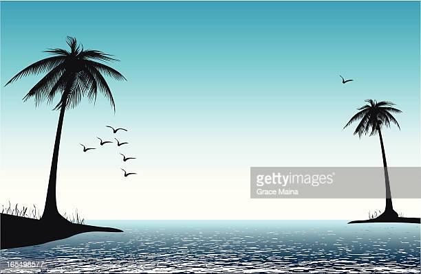Palm trees on beach - VECTOR