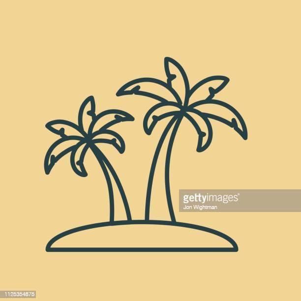 ilustraciones, imágenes clip art, dibujos animados e iconos de stock de palma árboles delgada línea icono - viajes - palmera