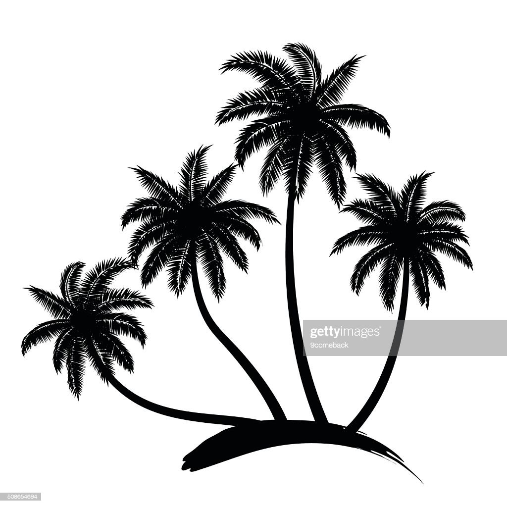 palm trees vector : Vector Art