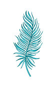 Palm tropical leaf hand drawn sketch. Exotic forest tree icon. Realistic vector illustration isolated on white background. Black ink line handdrawn art. Green watercolor line handdrawn art for t-shirt