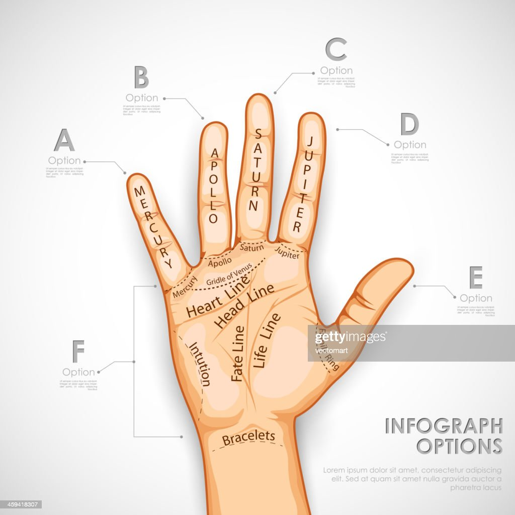 Palmistry Infographics