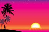 Palms in the Sunset
