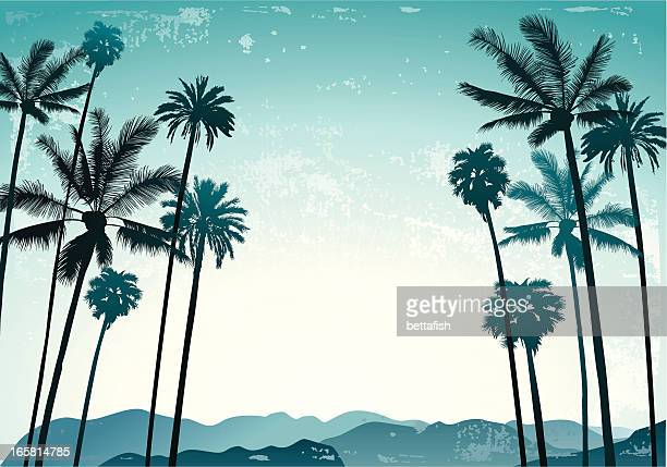 palms landscape - palm tree stock illustrations