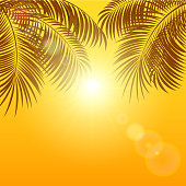 Palms on orange background