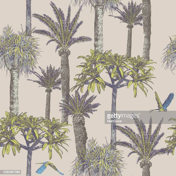 palmtree & parrots repeat pattern - coconut leaf stock illustrations, clip art, cartoons, & icons
