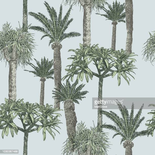 palmtree repeat pattern - tropical tree stock illustrations