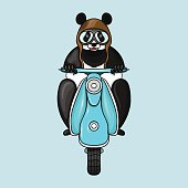 Panda in helmet goes on scooter. Hand drawn vector illustration