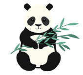 Panda isolated on white background. Vector illustration.