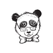 Panda portrait in a glasses with bow. Hand drawing illustration.