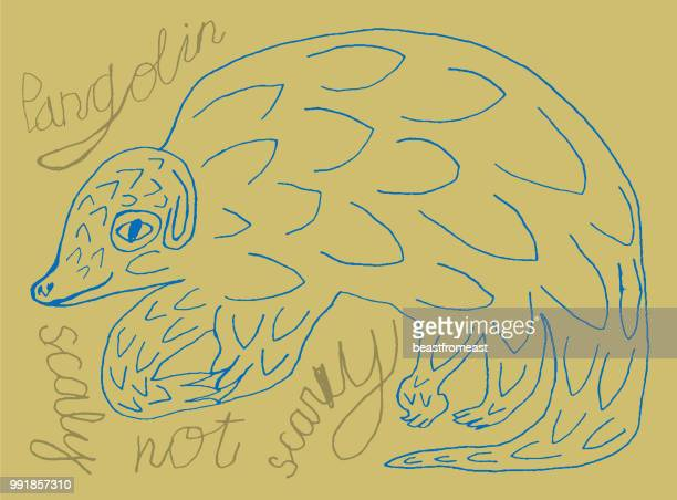 pangolin - anteater stock illustrations