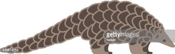 pangolin walking and searching, side view vector - pangolin stock illustrations