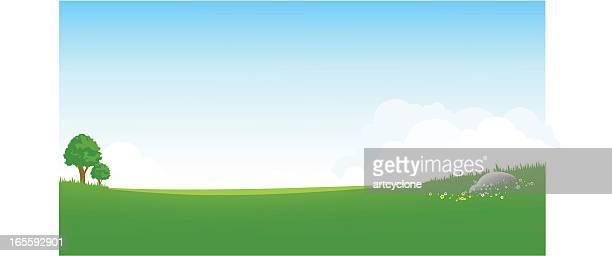 panoramic green field