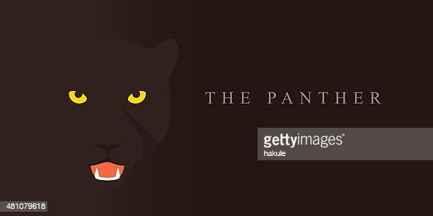 ilustraciones, imágenes clip art, dibujos animados e iconos de stock de panther, raza de gato de historieta icono de diseño plano de cara - jaguar