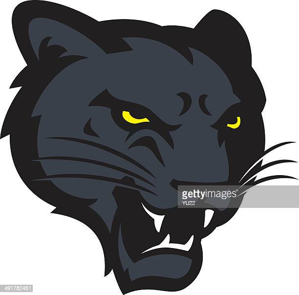 panther head - leopard stock illustrations
