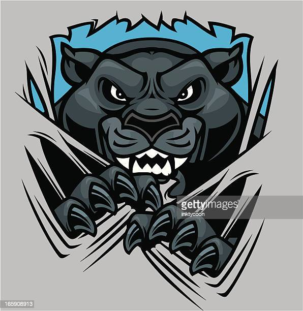 panther mascot shred - claw stock illustrations, clip art, cartoons, & icons