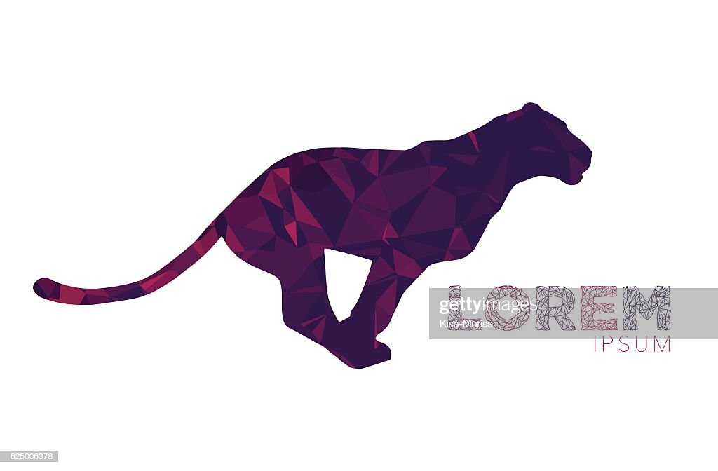 panther, puma, wild cat logo. Animal logo, label, mascot, symbol