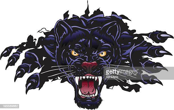 panther rip - claw stock illustrations, clip art, cartoons, & icons