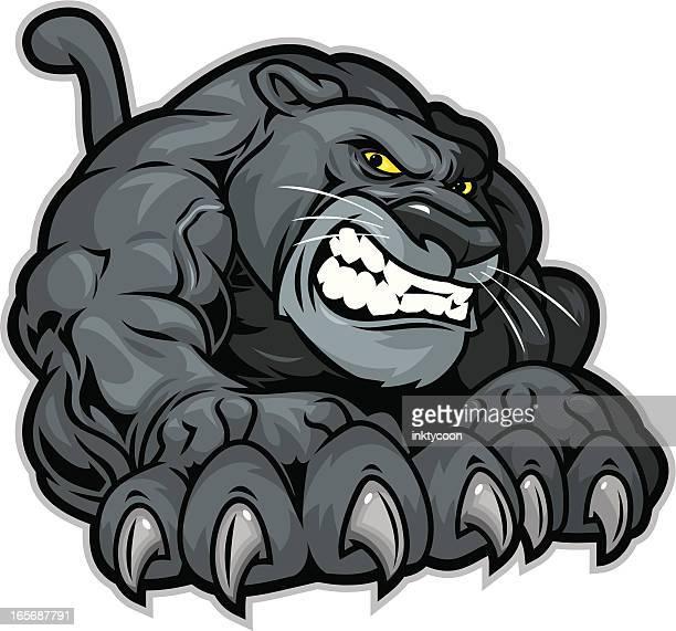 ilustraciones, imágenes clip art, dibujos animados e iconos de stock de panther arañazos - leopardo