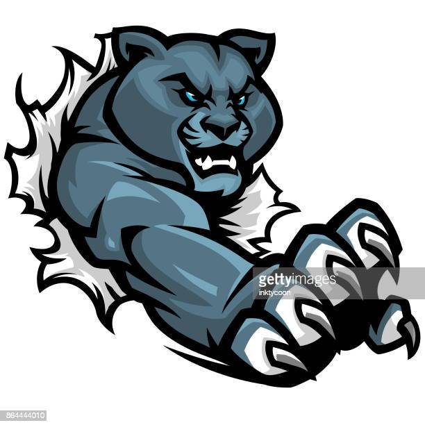 panther tear sport kit - fighting stance stock illustrations, clip art, cartoons, & icons