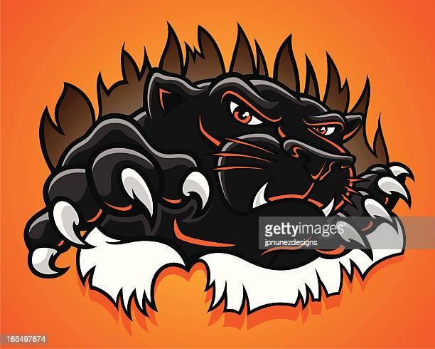 ilustraciones, imágenes clip art, dibujos animados e iconos de stock de panther_burst - leopardo