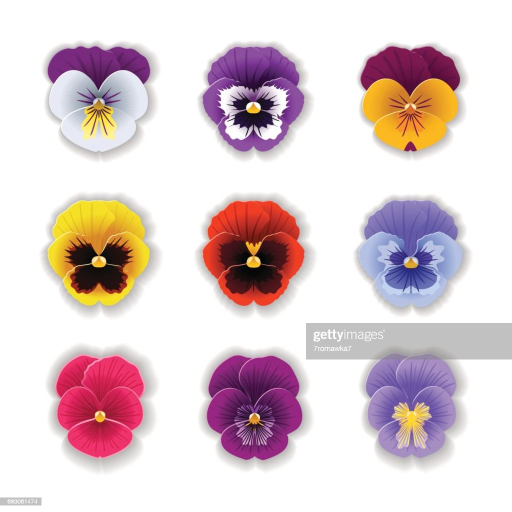 Paper art pansy set.