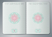 Paper passport open blank pages vector template