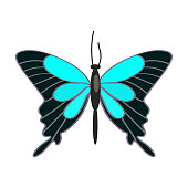 Papilio ulysses butterfly isolated vector